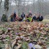 leaf_peeping Umbria