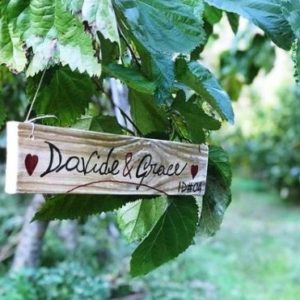 ADOPTING A MULBERRY TREE