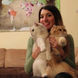 THE CATS - I GATTI
